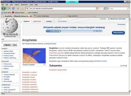 Gambar 6. Model penelurusan referensi lewat portal wikipedia